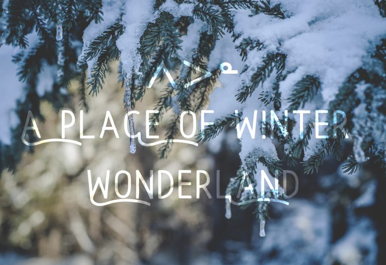 A place of wonderland