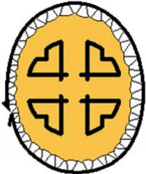 CBHSSJB logo no text